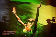 Danse orientale à Nantes - Les mémoires de Bastet50
